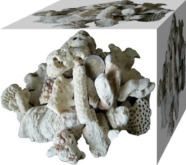Korallensand / Korallenbruch 1kg 2-6cm
