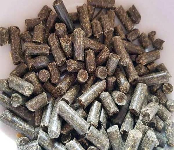 Brennesselsticks 60 g Garnelen ,Krebse, Schneckenfutter