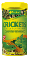 Crickets  100ml / 10g