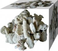 Korallensand / Korallenbruch 5kg 2-6cm