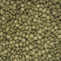 3-Algae Tablets B   2kg / ca. 10.000pcs